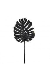 Monstera leaf black