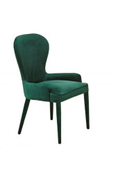 Chair aunty velvet green